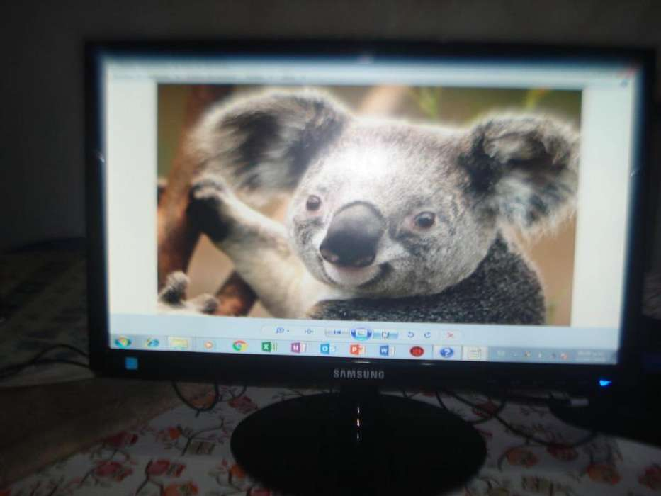 Monitor Led 19 Samsung Ls19b300 Excelente Imagen Impecable