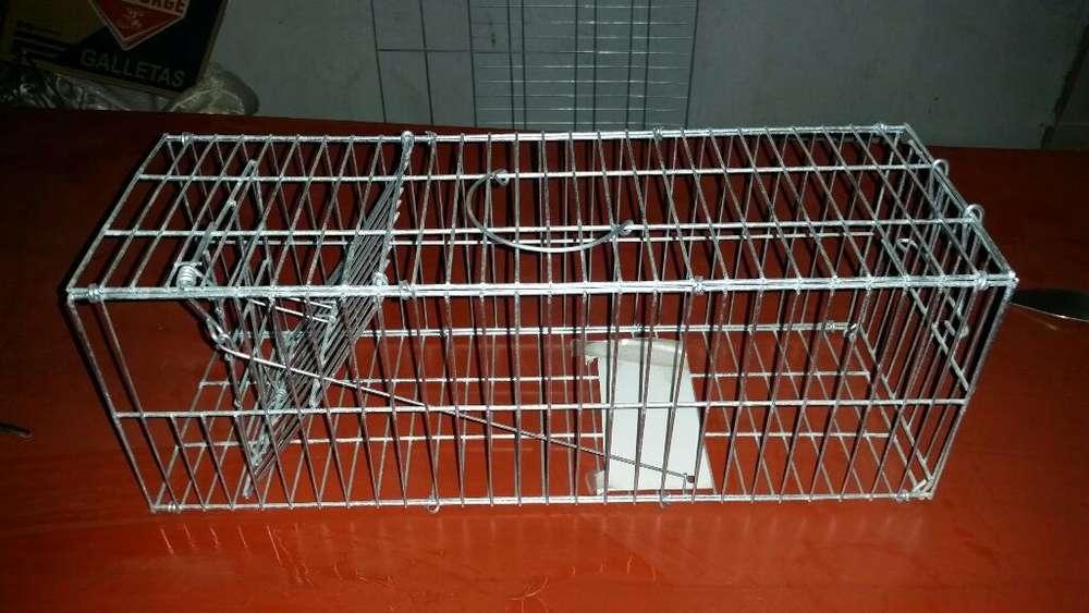 Venta de Trampas para Ratas Y Otros