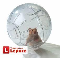 Bola Esfera GRANDE Para Hamters Y Roedores Envios a Provincias