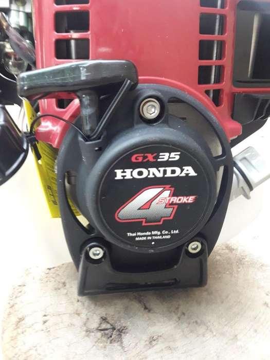 Vendo Desmalesadora Honda.