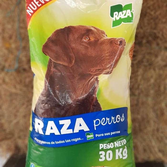 Raza <strong>perros</strong>