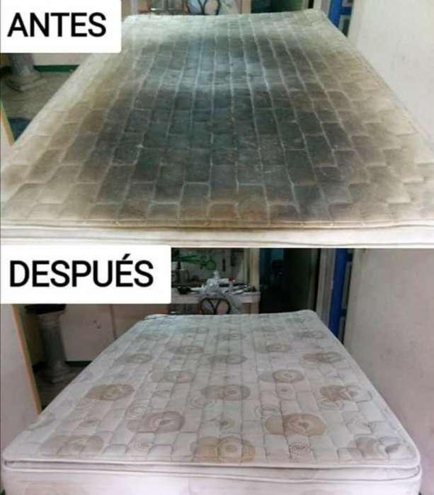 Limpieza de Colchones en Loja