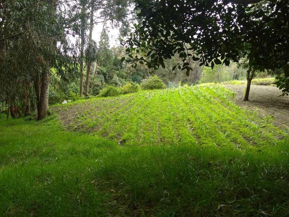 Venta de Terrenos en Chambo tranquilidad, seguridad donde puedas construir tu villa de Campo