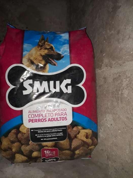 Alimento para <strong>perros</strong>
