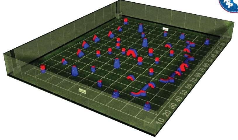 INFLABLES x 52 unidades para campo