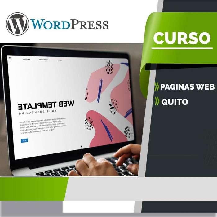 curso de diseño Paginas web con WORDPRESS. CLASES particulares.