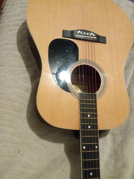 Guitarra Electroacustica Parker
