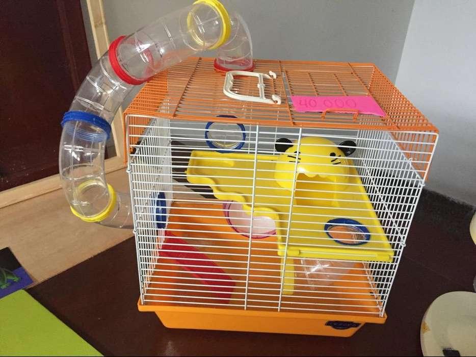 Jaula Hamster Grande