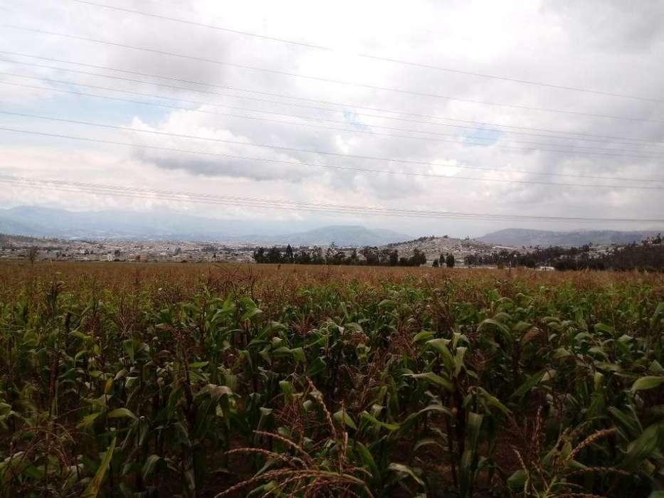 venta de 1600 m2 de terreno en san juan de calderon.
