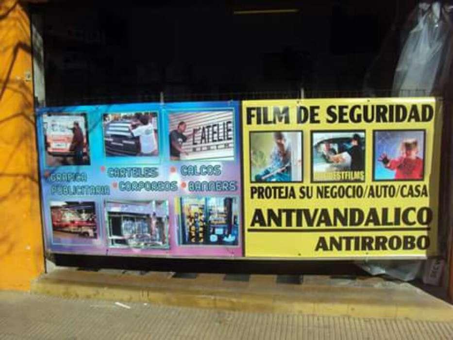 Polarizado , Film Antivandalico