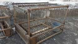 Jaulas de madera caseras