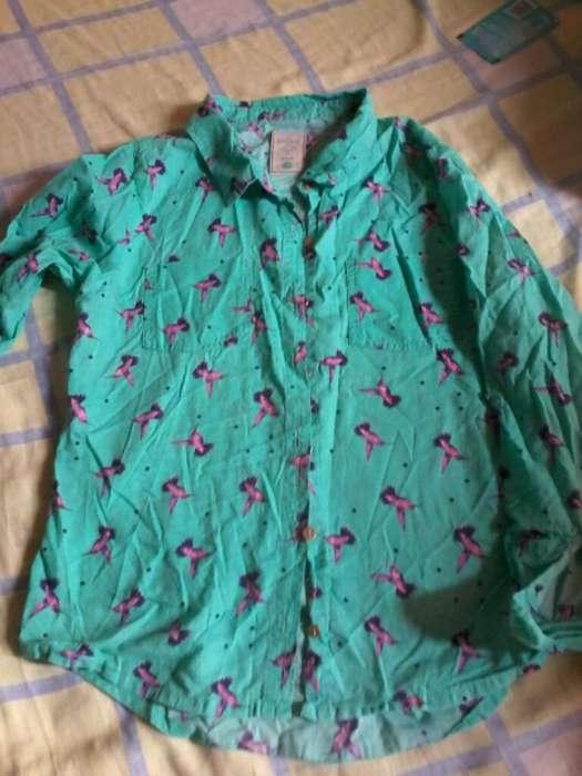 Camisa Manga 3 Cuartas