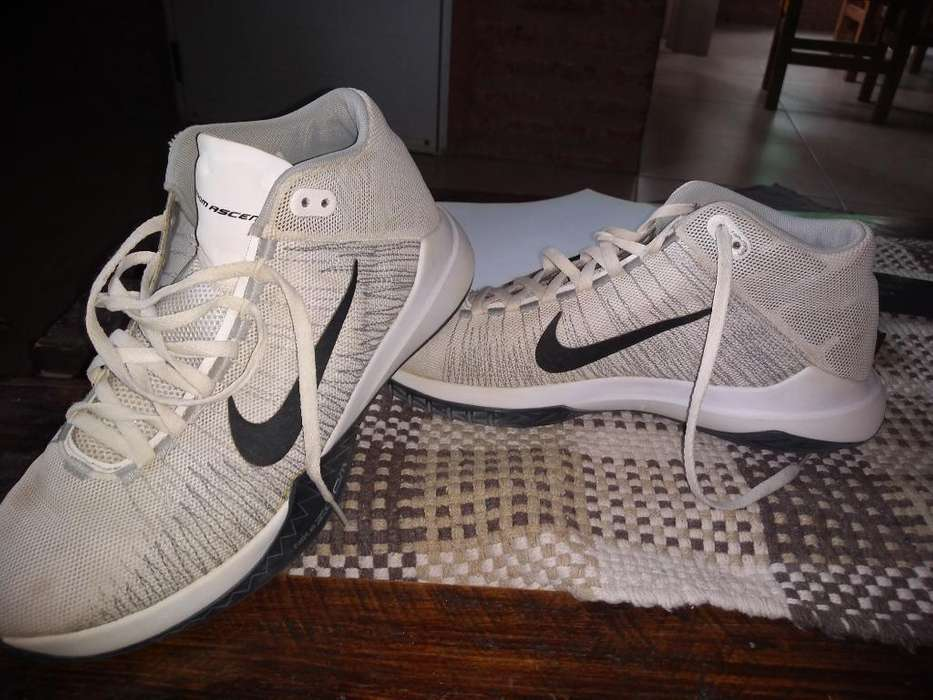 Zapatillas de Basket (casi Nuevas)