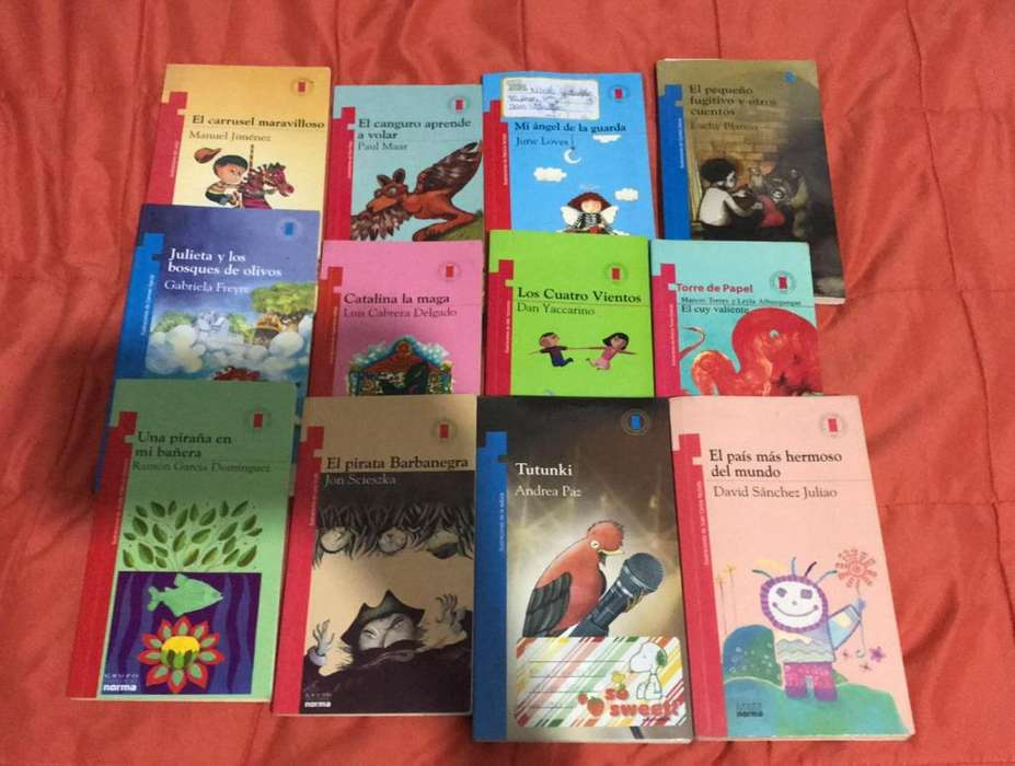 Libros de plan lector