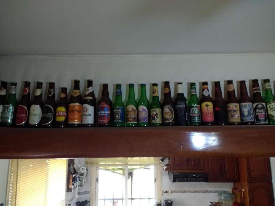 Lote de Envases de Cervezas Decorativas