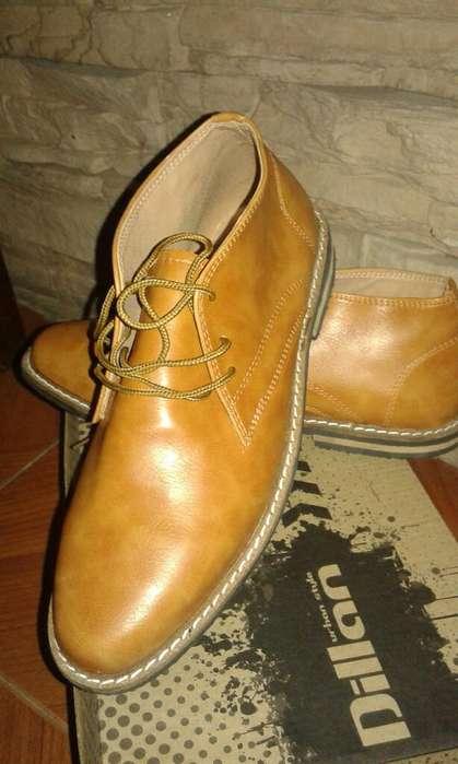 Zapato Botita Nuevo