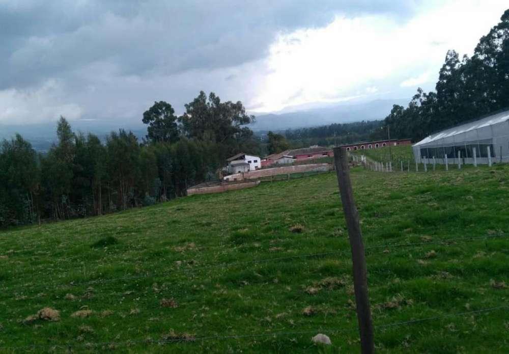 Hacienda en Venta en Cayambe de 42 Hectáreas