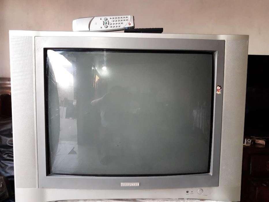 Vendo Tv 29 Telefunke con Control Remoto