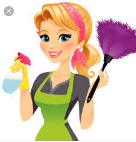 Limpio casas de familia 150 la hora.