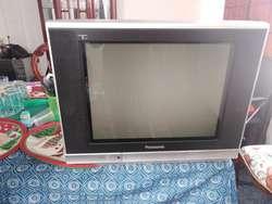 Televisor 21 Pulgadas en Buenas Condicio