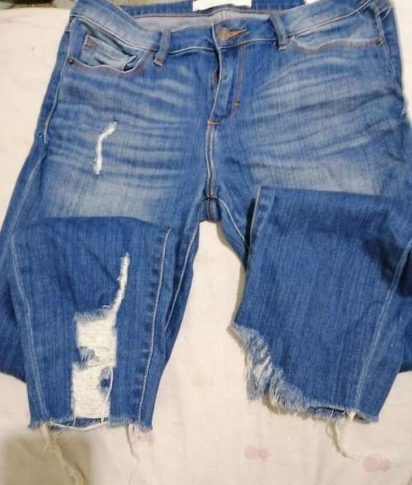 Lote de Jeans