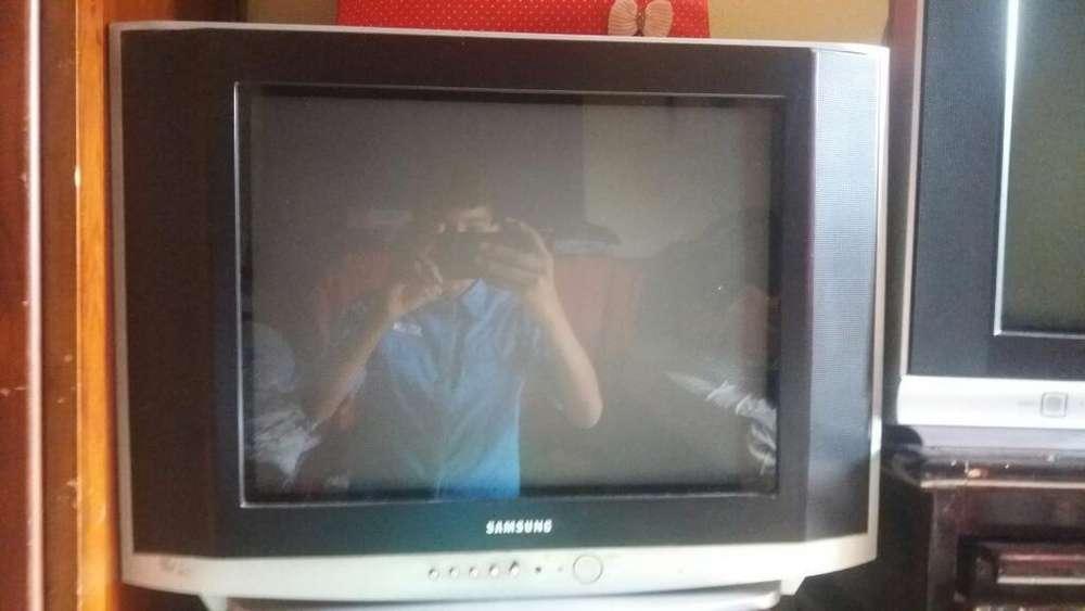 Se Vende Televisor