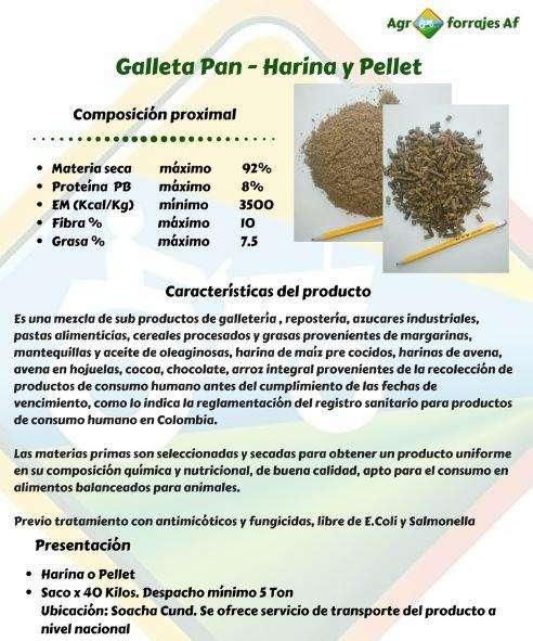 Galleta Pan alimentación Animal