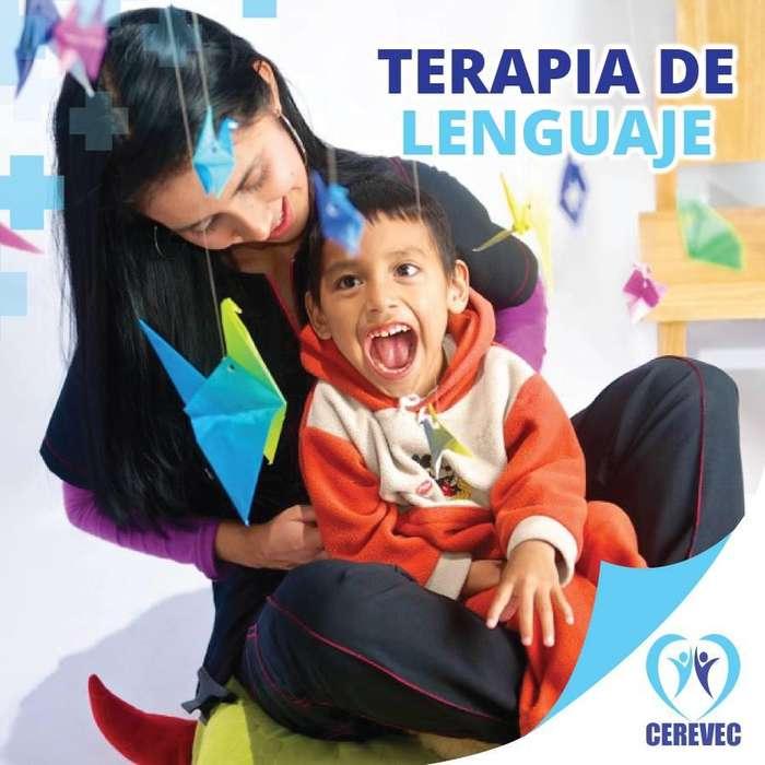 TERAPIA DE LENGUAJE - 0987008333 - VALLE DE LOS CHILLOS