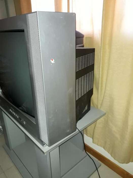 <strong>televisor</strong> 29'