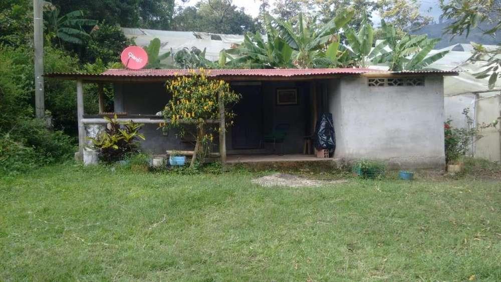 casa campestre con lote <strong>plano</strong> de 700 metros cuadrados