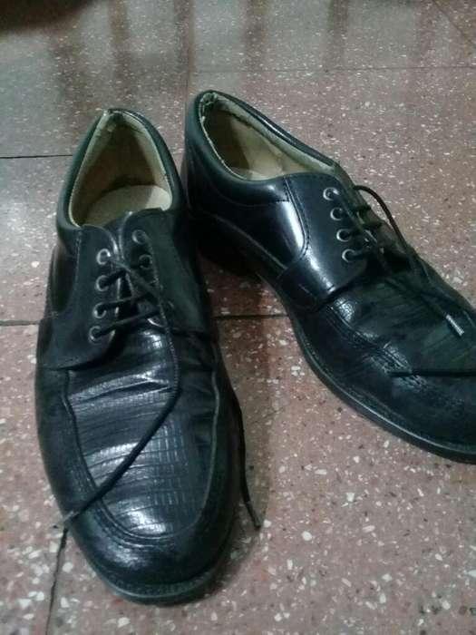 Zapatos de Hombre N*43