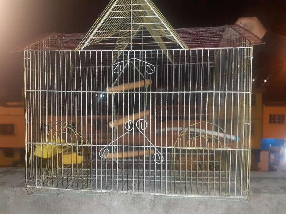 Jaula para <strong>aves</strong>