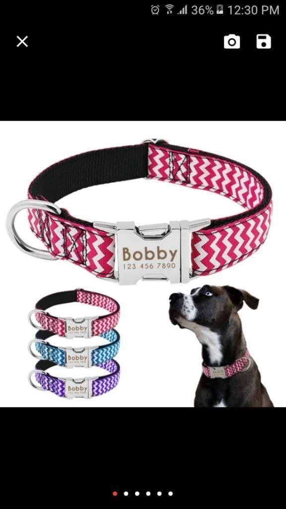 Espectacular Collar para Tu Mascota