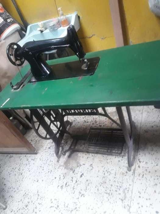 Maquina Plana Industrial -tapiceria-