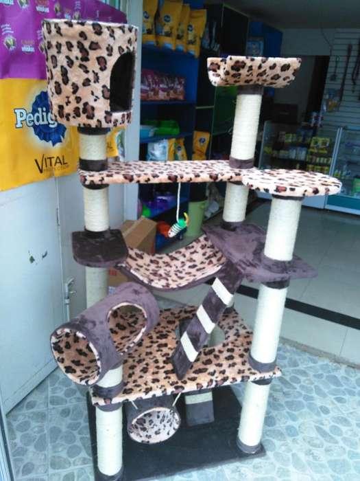 gimnasio para gatos fabricantes directos . promoción mes de febrero