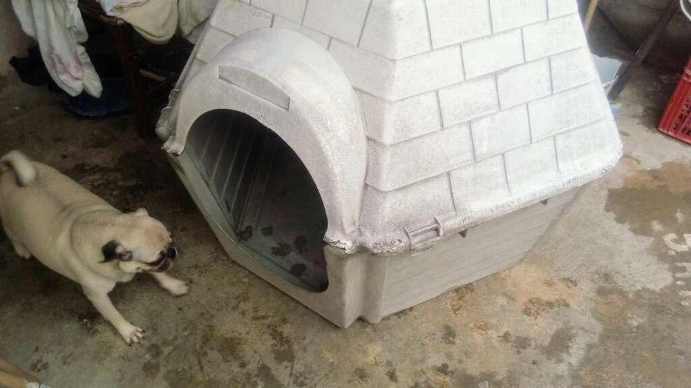 Vendo Casa Grande para <strong>perro</strong>
