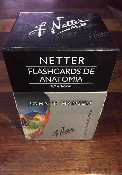 Flashcards Netter