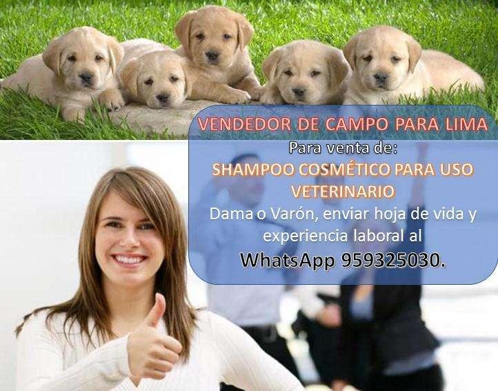 PERSONAL PARA VENTAS DE CAMPO C. 959325030