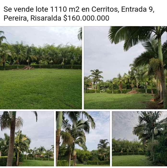 Se vende lote 1110m2 Cerritos Pereira Risaralda