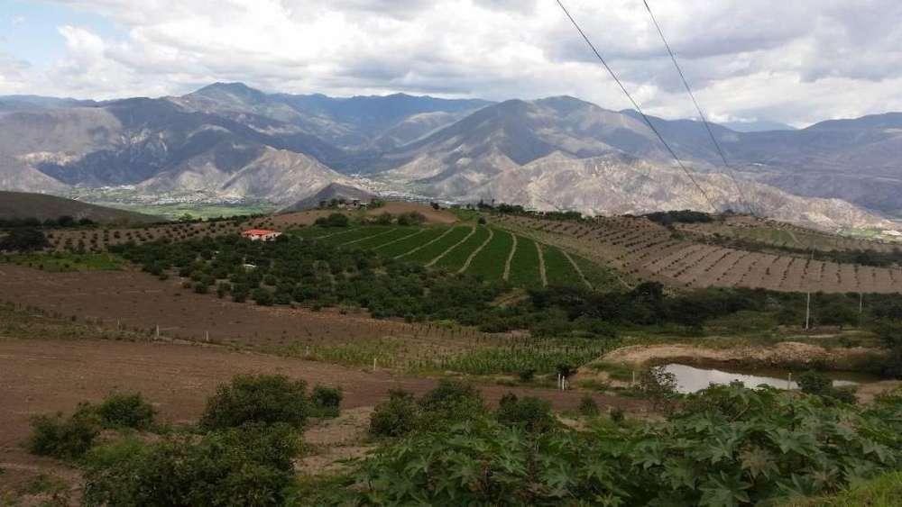 Venta de Finca en el Carchi/ Sector el Tambo
