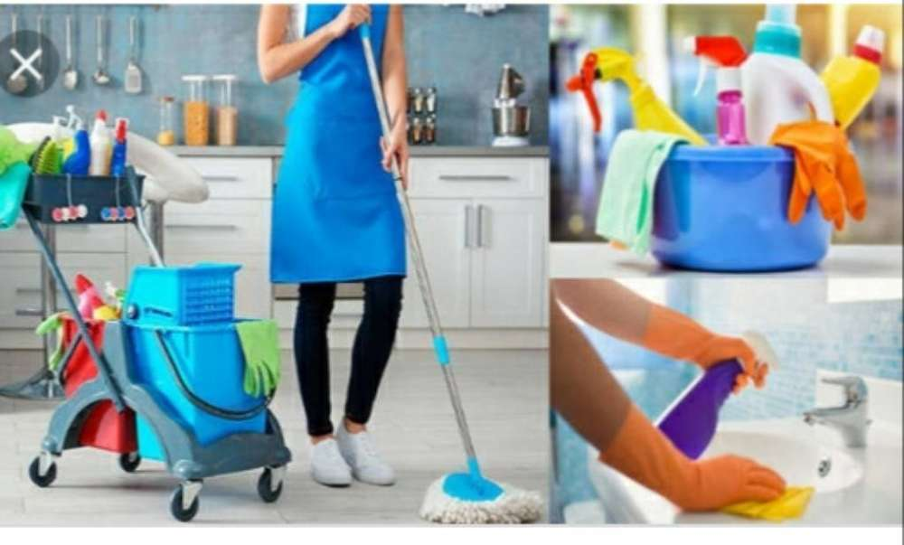 Busco Empleo de Doméstica por Dias