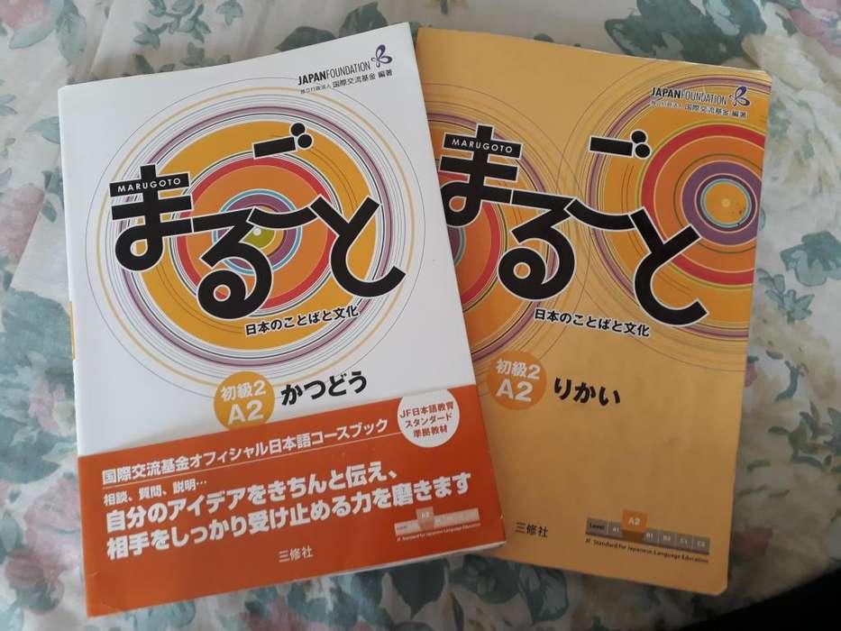 Libro Marugoto A22 aprende japones 2 x 70mil
