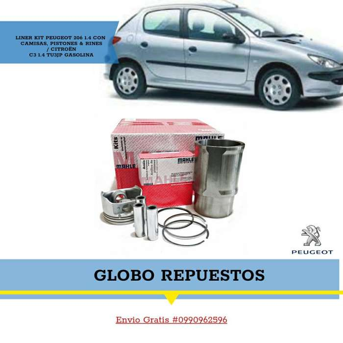 Repuestos Peugeot Reparacion Motor 206