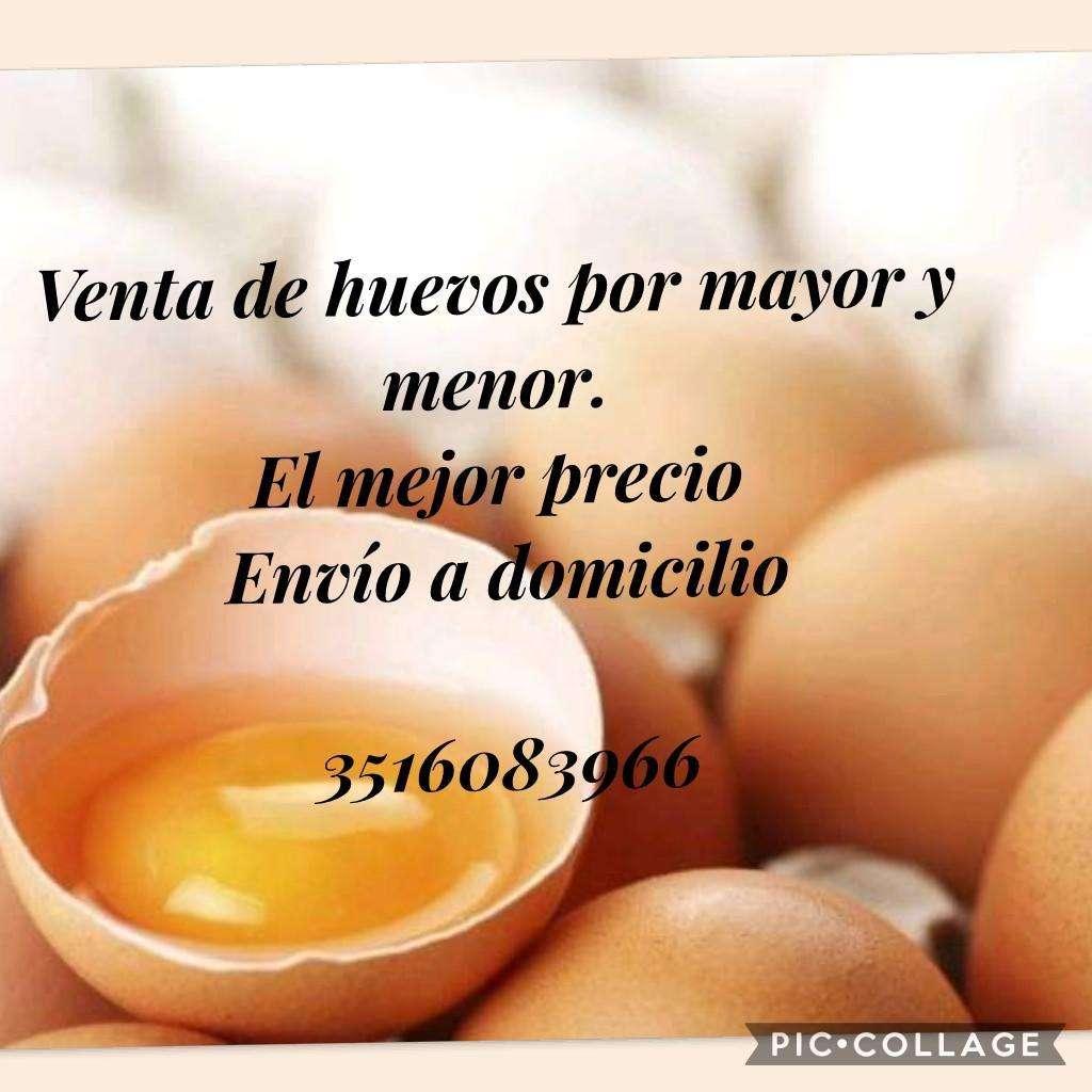 Huevos por Menor Y Mayor