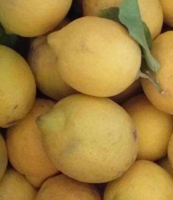 Limones Caseros (probalos Antes)