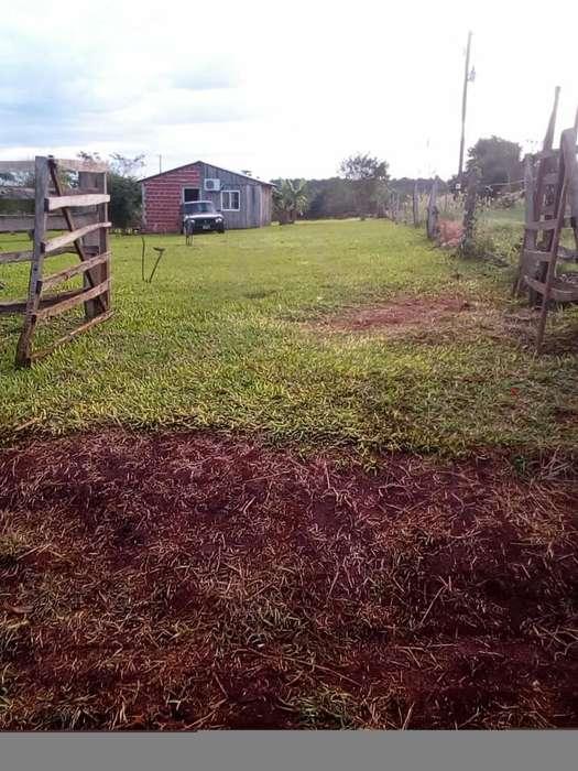 Vendo Terreno con Casa a 45 Km de Iguazu