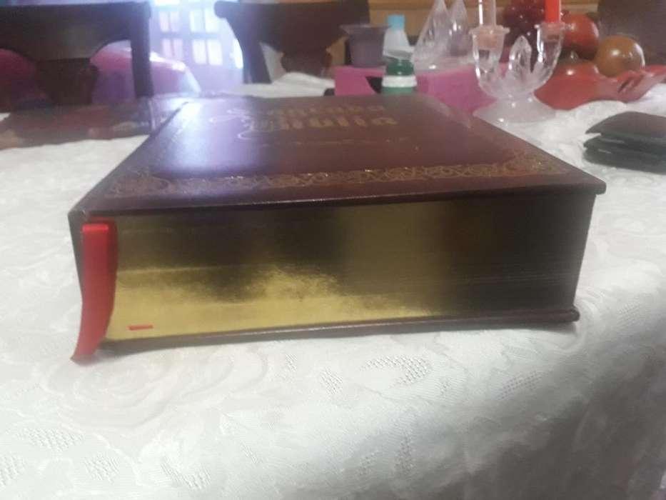 Biblia Nueva