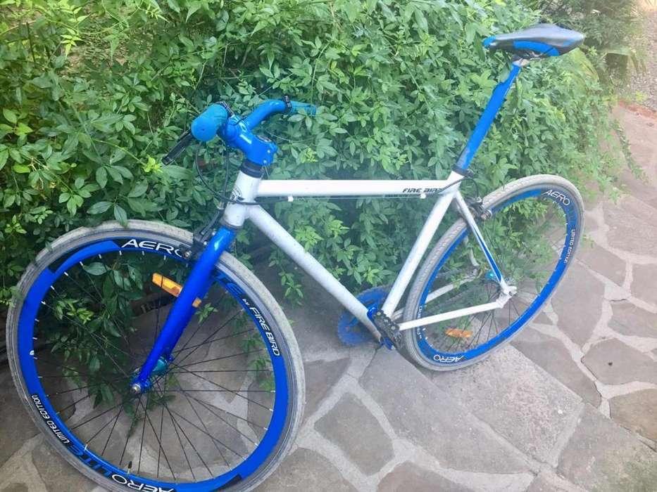 Bici Fixie R28 Firebird
