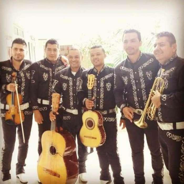 Mariachi Nuevo Tequila 3203875575