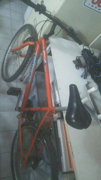 Vedo Bici Rodando 26.